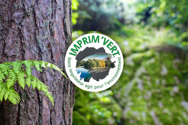 zoom-arbre-imprimvert